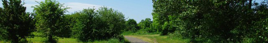Save Our Trails Rotating Header Image